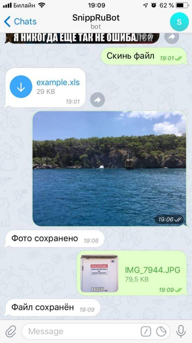 Переписка с телеграм-ботом @SnippRu