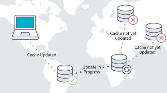 Когда обновляются DNS сервера?