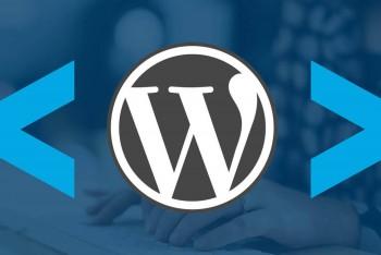 Wordpress – не выводятся теги p